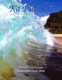Shorebreak on the west side of Oahu