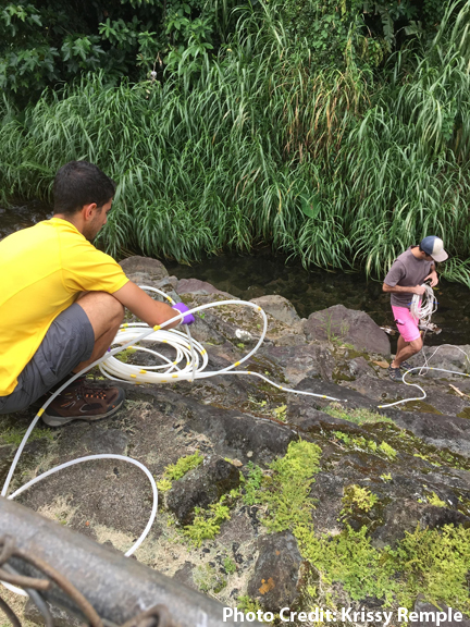 Graduate students set up equipment in stream