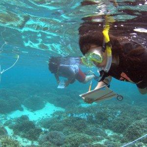 Exploring Our Fluid Earth Curriculum
