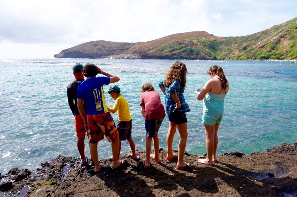 Hanauma Bay students standing on shoreline looking into ocean