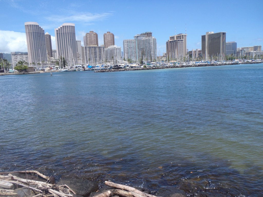 A view across the water towards the Honolulu skyline.