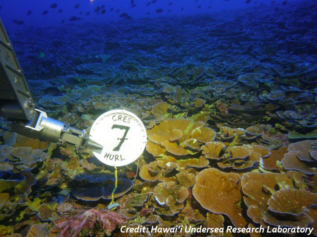 A robotic arm holds a label saying HURL7 in front of a dark blue coral reef area