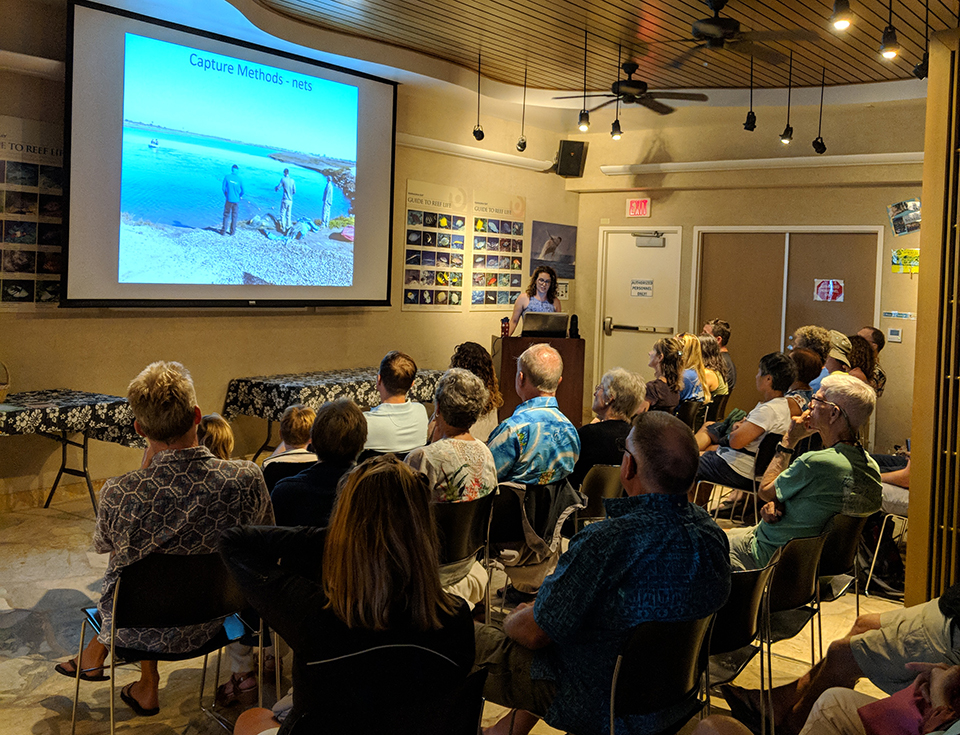 Hanauma Bay Education Program Thursday Evening Seminar