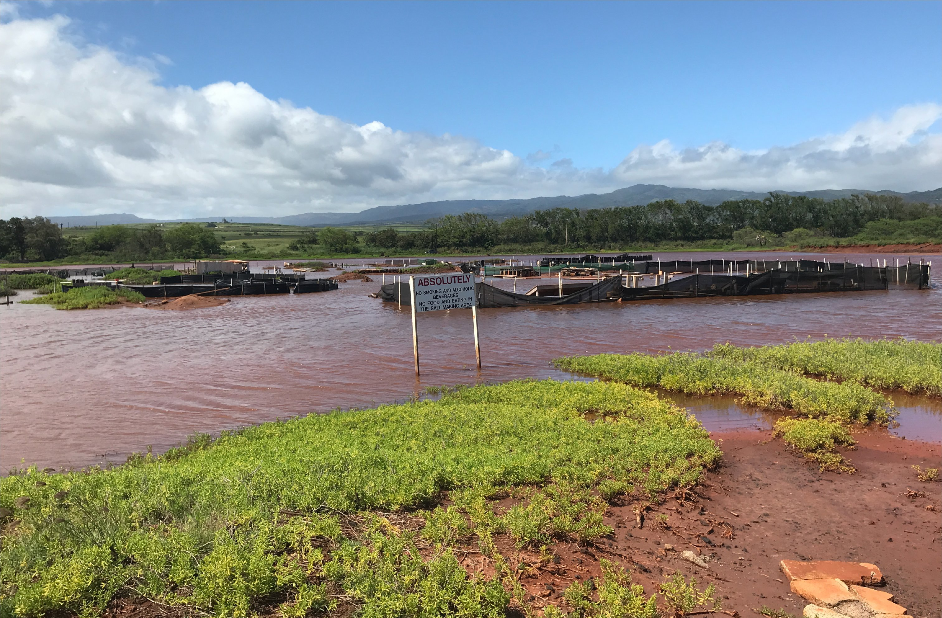 Hanapepe Salt Ponds flooded
