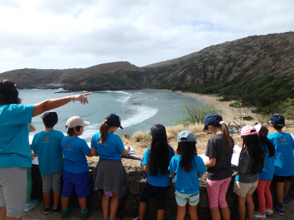 group of students at lookout above hanauma looking into bay