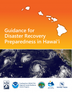 cover of the final 2019 Hawaii Disaster Recovery Preparedness Guidance
