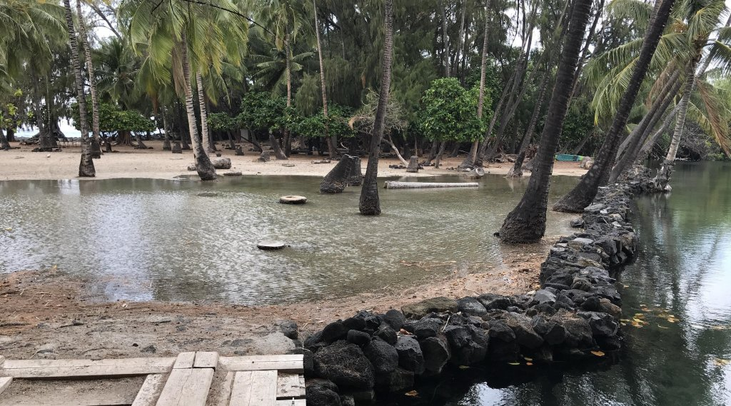 Kiholo Fishpond in West Hawai'i during King Tide Event