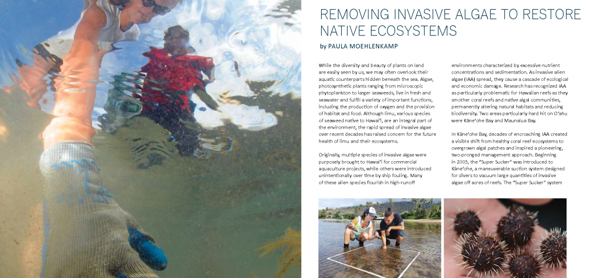 community approach invasive removal