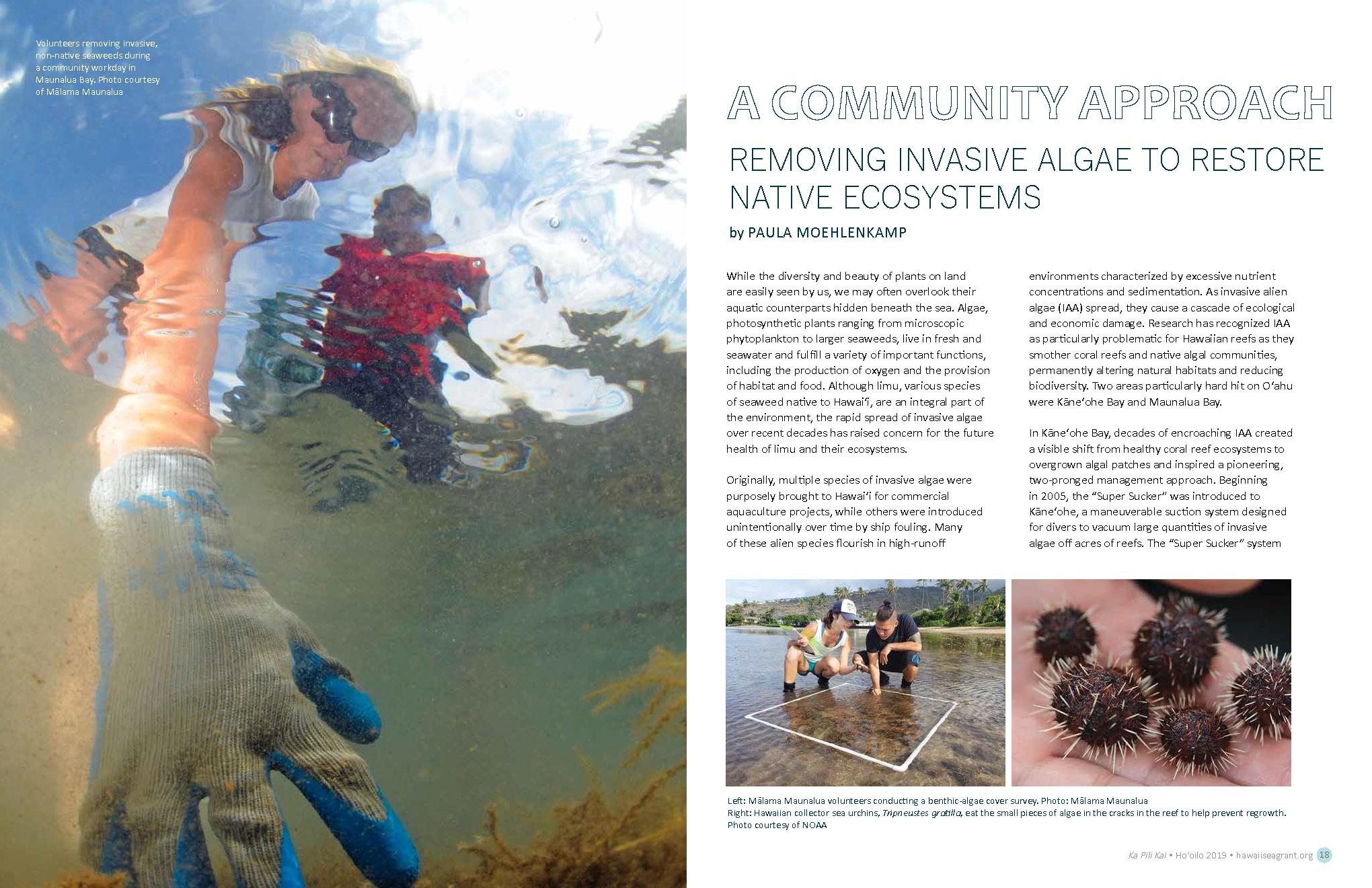 Removing Invasive Algae to Restore Native Ecosystems