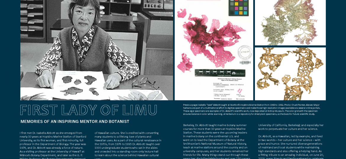 """opening spread for """"first lady of limu"""" article, Ka Pili Kai Hooilo 2019"""