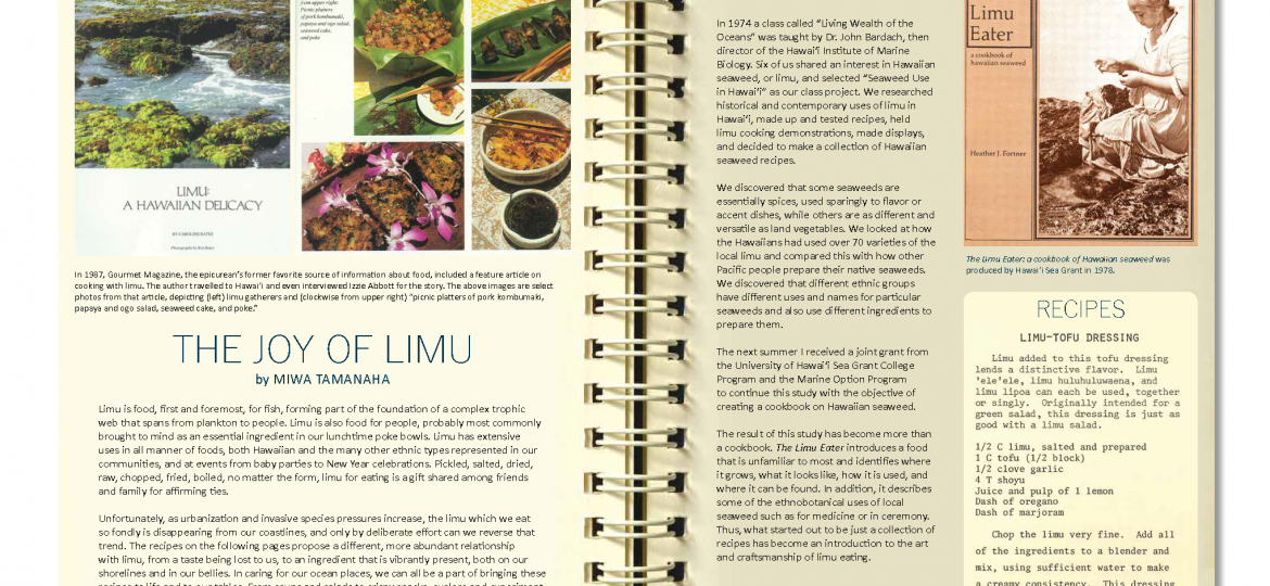 "opening spread for ""the joy of limu"" article, Ka Pili Kai Hooilo 2019"