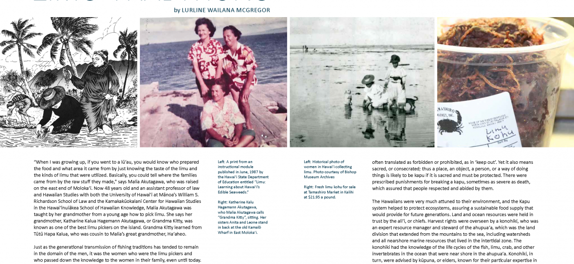 """opening spread for """"limu traditions"""" article, Ka Pili Kai Hooilo 2019"""