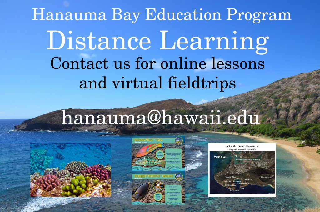 Contact us for online lessons and virtual fieldtrips hanauma@hawaii.edu