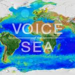 voice of the sea logo over radar image