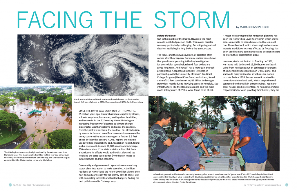 Title layout including sattelite pacific hurrican image, Hilo flooding, and community planning group around a table