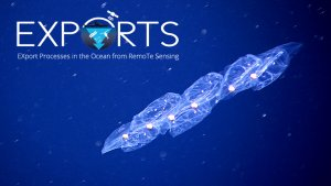 EXPORTS 3: Tracing Carbon Flow to the Deep Sea