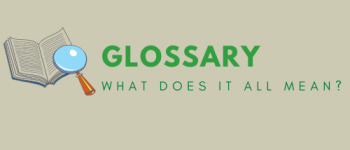 Green Infrastructure Glossary