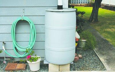 Rain Barrel, Honolulu Board of Water Supply
