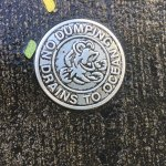 'No Dumping, Drains to Ocean'