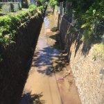 Turbidity in Channelized Stream Segment