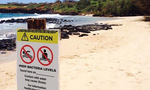 Beach Poster Indicating Bacterial Contamination/Water Quality Warning