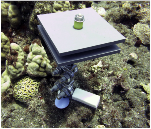 An instrument sits on a coral reef