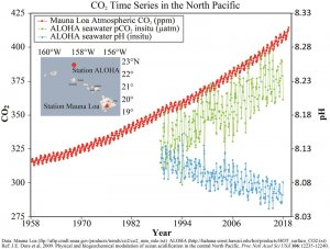 Graph showing increasing carbon dioxide in the atmosphere and ocean, and decreasing pH, over time.
