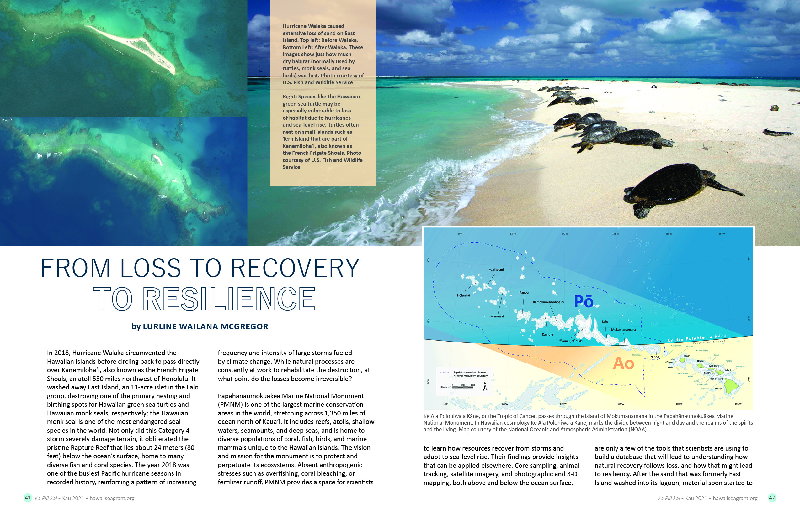 From Loss to Recovery to Resilience
